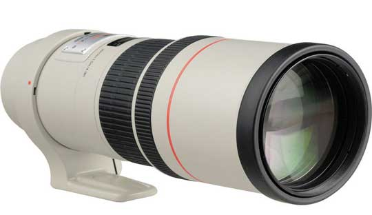 Canon 300mm f/4 IS, 24mm f/2.8 and 50mm f/1.3 (2015) Rumors