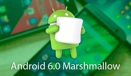 Android M Name