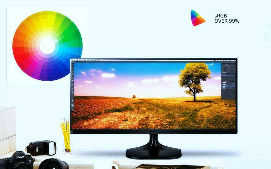 Best Monitors for Photography and Video Work