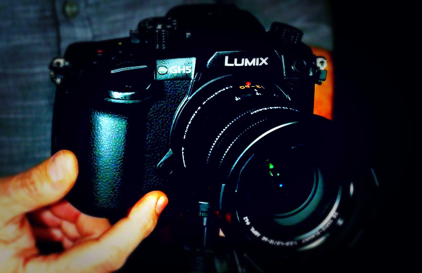 Panasonic Mirrorless Camera